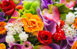 Стеклянные фартуки для кухни с изображением цветов и растений